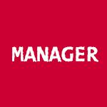 Strumenti per manager